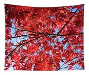 Autumn Leaves And Blue Sky Tapestry