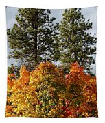 Autumn Maple With Pines Tapestry
