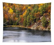 Autumn Palette Tapestry