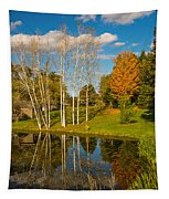 Autumn Reflecting Tapestry
