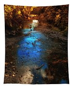 Autumn Reflections On The Tributary Tapestry