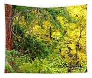 Autumn Splendor 14  Tapestry