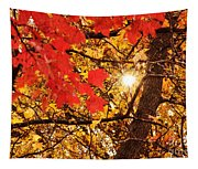 Autumn Sunrise Painterly Tapestry