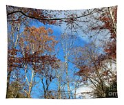Autumn Trees And Heaven Tapestry