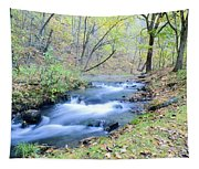 Autumn Tributary Tapestry