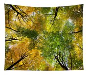 Autumnal Display Tapestry