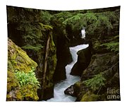 Avalanche Creek Glacier National Park Tapestry