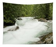 Avalanche Creek In Spring Run Off Tapestry