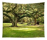 Avery Island Oaks Tapestry