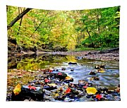 Awesome Autumn  Tapestry