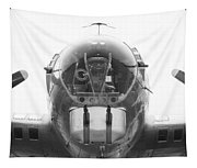 B17 Nose Guns Tapestry