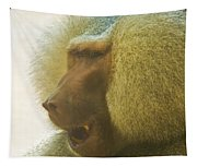 Baboon In The Sun Tapestry