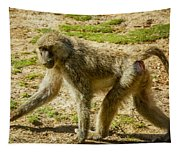 Baboon Tapestry