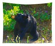 Baby Bear Cub Tapestry