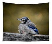 Baby Blue Jay Tapestry