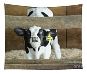 Baby Cow Tapestry