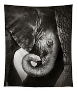 Baby Elephant Seeking Comfort Tapestry