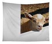 Baby Goat Tapestry