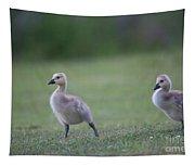 Baby Goslings Tapestry
