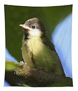 Baby Coal Tit Tapestry