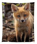 Baby In The Wild Tapestry