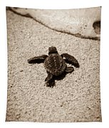 Baby Sea Turtle Tapestry