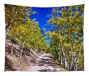Back Country Road Take Me Home Colorado Tapestry