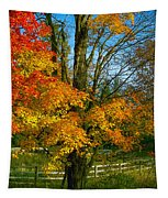 Back Road Beauty Tapestry