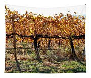 Backlit Autumn Vineyard Tapestry