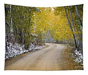 Backroads Of Autumn Tapestry