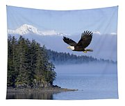 Bald Eagle In Flight Over The Inside Tapestry
