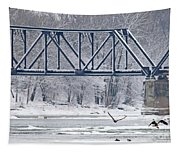 Bald Eagle With Fish By Railroad Bridge 6639 Tapestry