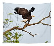 Bald Eagle With Fish Tapestry
