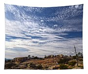 Bald Rock Glacial Erratics Tapestry