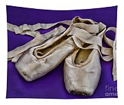 Ballerina Slippers Tapestry