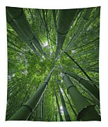 Bamboo Forest 1 Tapestry