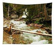 Baring Falls Tapestry
