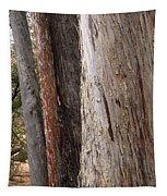 Bark Tapestry