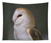 Barn Owl Tapestry