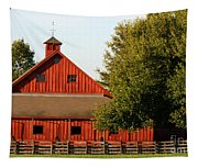 Barn South-3586 Tapestry