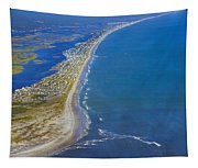 Barrier Island Aerial Tapestry