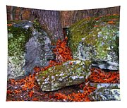 Battlefield In Fall Colors Tapestry