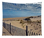 Beach At Cape Henlopen Tapestry