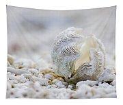 Beach Clam Tapestry