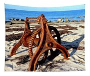 Beach Find Tapestry