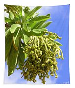 Beach Tree Seed Pods Tapestry