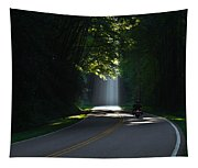Beam Me Up The Great Smoky Mountains Tapestry