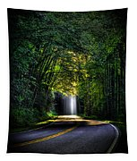 Beam Me Up Great Smoky Mountains Tennessee Mountains Art Tapestry