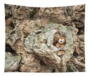 Bear Cave Tapestry