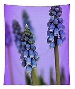 Beautiful Blue Tapestry